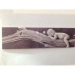 Baby naamkaart 7